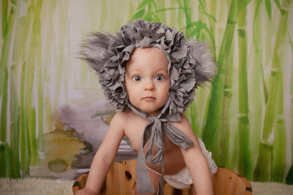 photo bebe koala caen